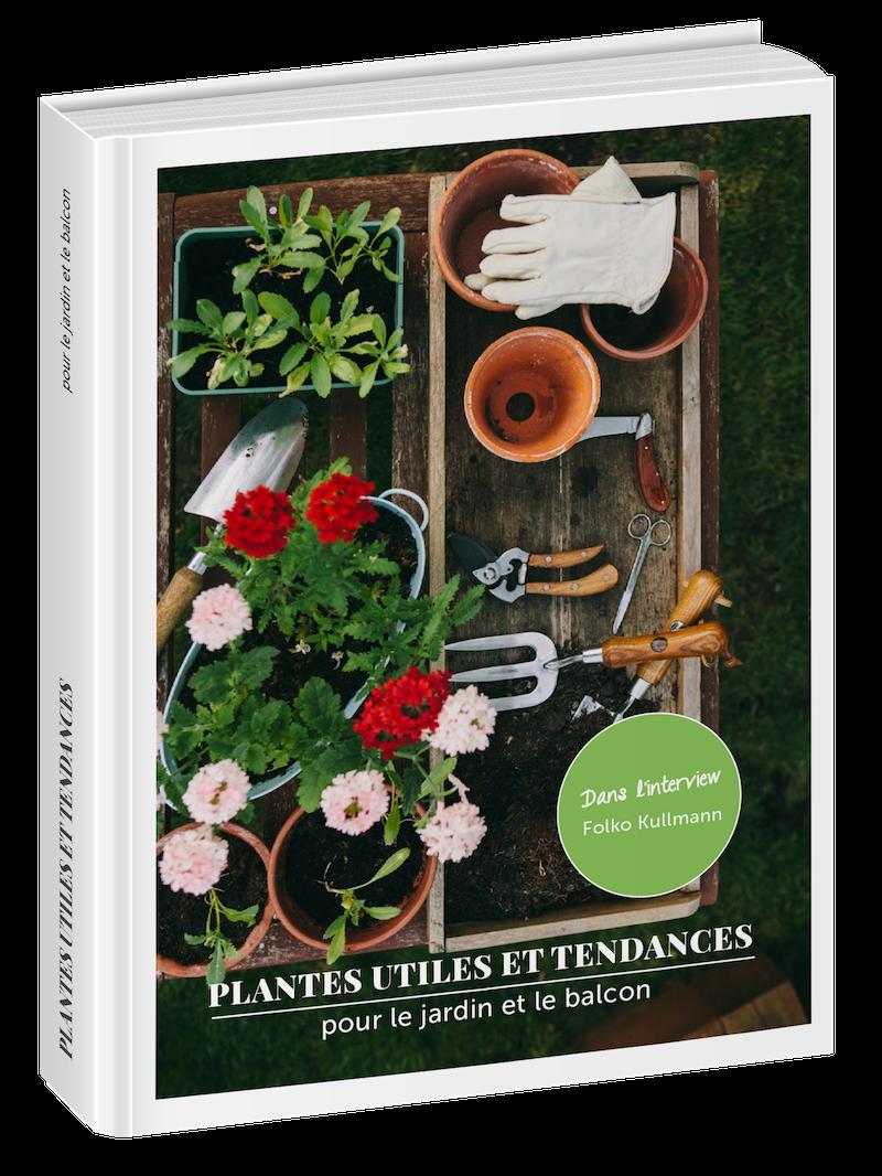 Plantes Utiles Pour Balcon Et Jardin Votre Guide Avec Des